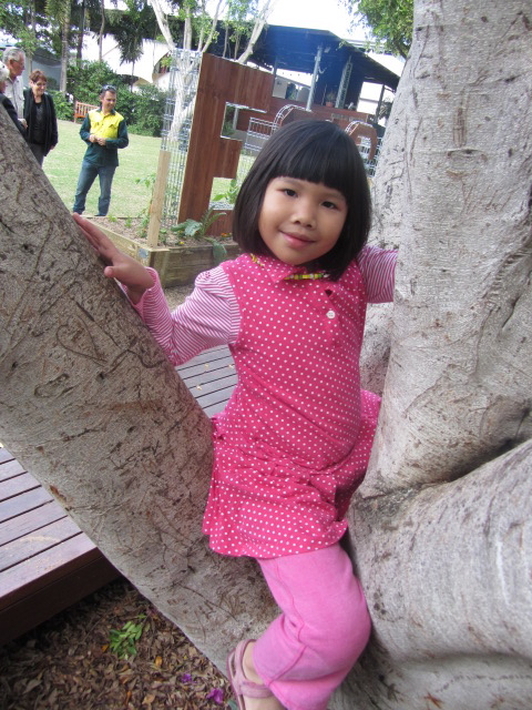 Amanda in the tree at Southbank parklands.