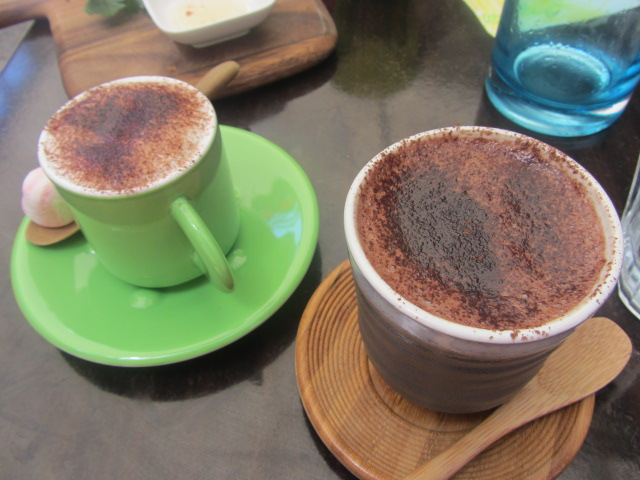 A picture of my 69% dark chocolate and Amanda's babycino at Not Just Coffee, Sydney