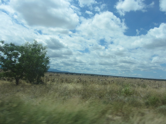 Outback New South Wales, past Moree.