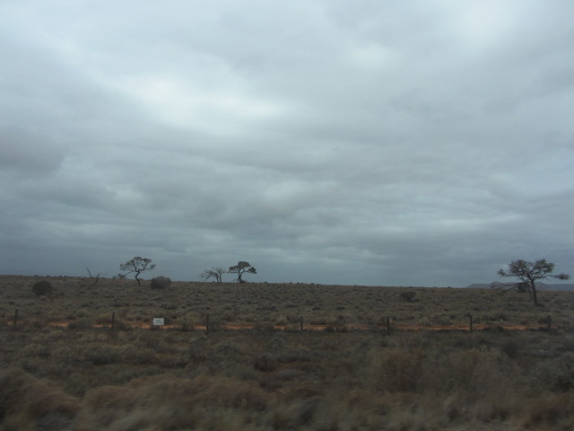 A picture of the countryside outside Port Augusta, South Australia, heading towards Ceduna.