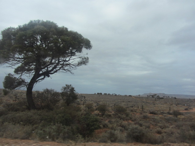 A picture of the landscape leading away from Port Augusta, South Australia.