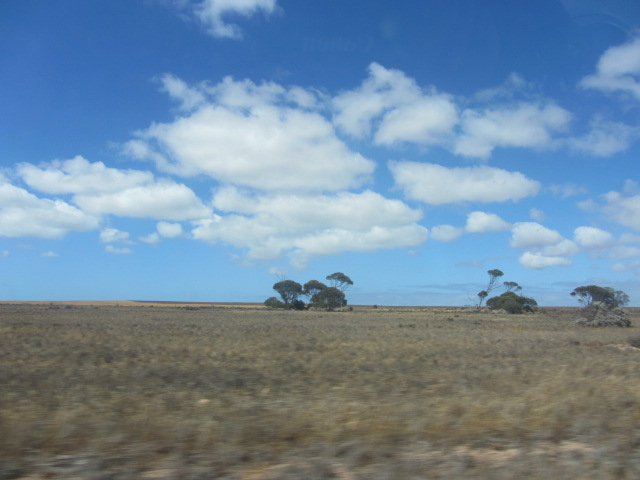 A picture of the landscape leading away from Ceduna, South Aus
