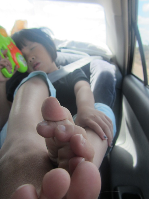 A picture of Amanda fast asleep at the back of the car.