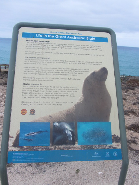 A picture of a poster about the Great Australian Bight.