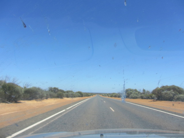Can you see the end? I can't either.  A picture of the road after Norseman towards Perth.