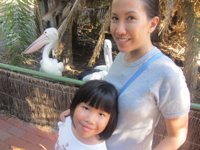 Us with dinner, maybe? A picture of Amanda and I with Ibises at the Perth Zoo.