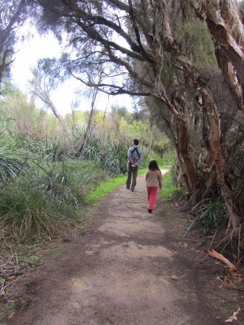 Going for a 2 hour walk around the lake at Yanchep National Park.